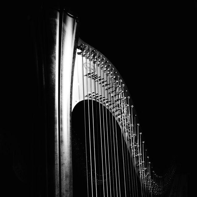 Echo (1) | muziekinstrumenten, musical instruments, fotografie, photography, art, artistic, kunst