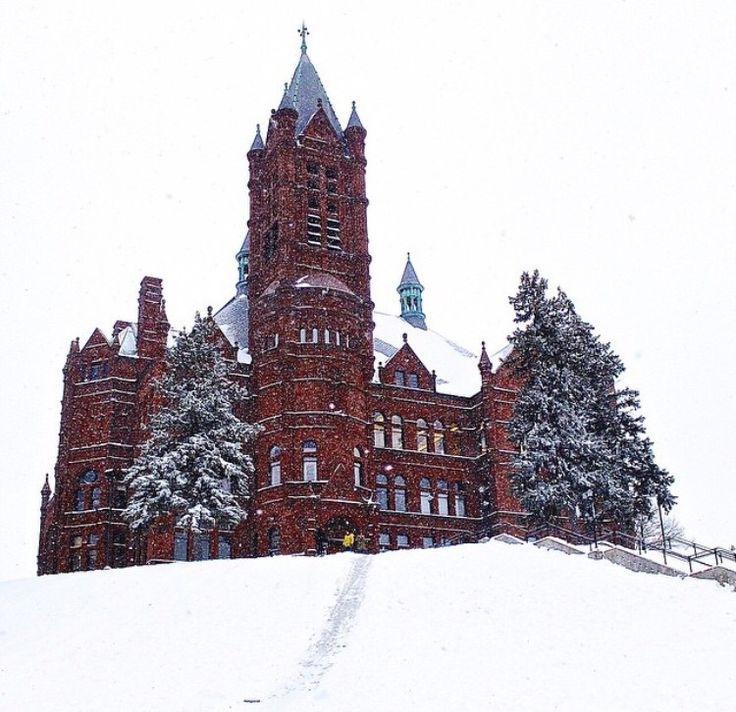 561 best college images on pinterest decorated for Michaels crafts syracuse ny