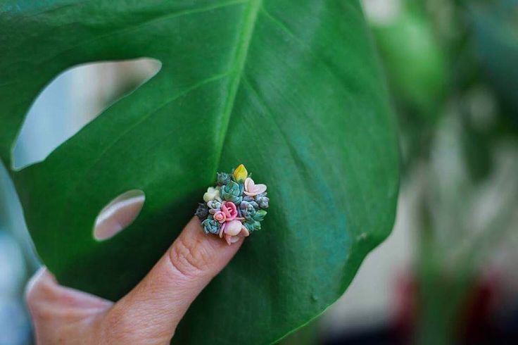 Show Off Your Green Thumb with Succulent Nails — #Trending