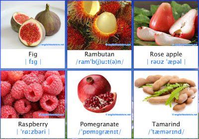 nama nama buah dalam bahasa inggris (bergambar)