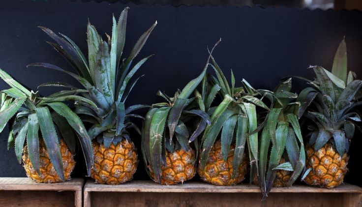 Pineapples Photography by Indi Petrucci http://thevillaofthebirds.com/portfolio/bee-pollen/