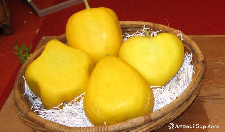 Aneka bentuk Melon di Taman Buah Mekarsari