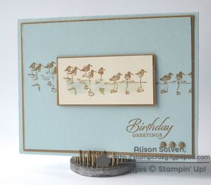 Stampin' Up! Wetlands with Cool Background Stamping Techniques!