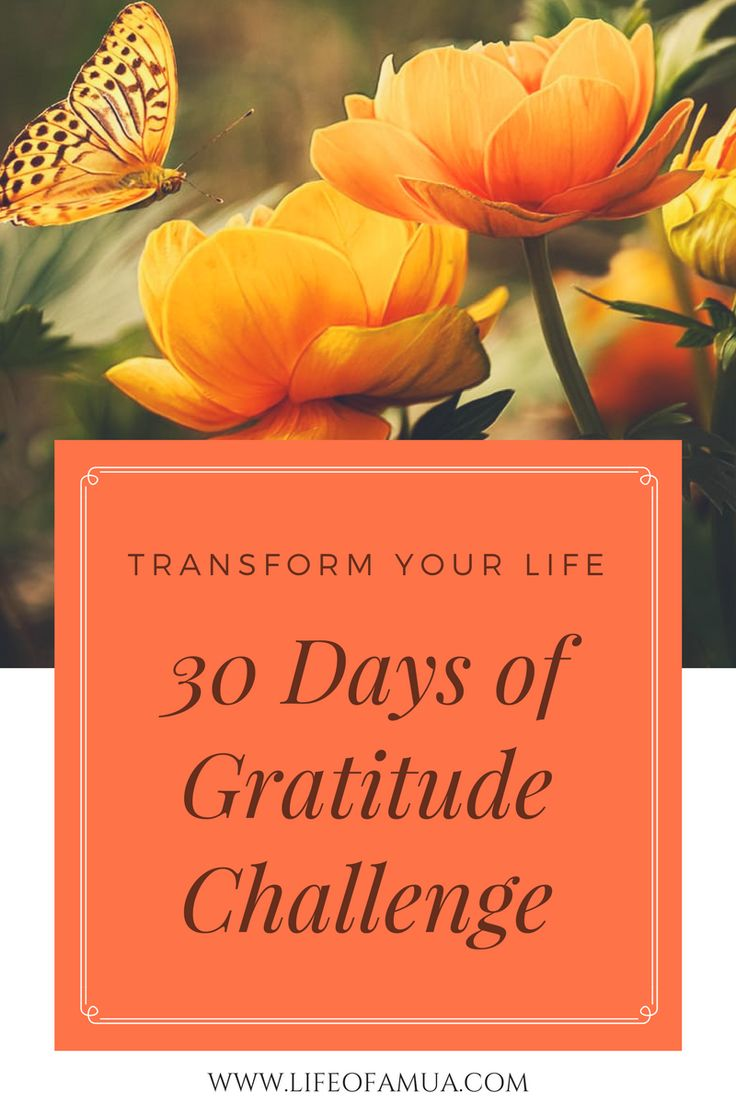 """If you want things in your life to change, you're going to have to change things in your life."" What is the Gratitude Challenge? The Gratitude Challenge is very simple : Simply give thanks to whatever you are grateful for everyday. You can create a Gratitude Jar or a Gratitude… View Post"