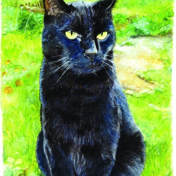 Drew a pissed off cat #cat #draw #drawings #cat #instaartist #instaartwork #instaart #cat #catofinstagram #neko #illustrator #illustration #traditionalartist #traditionalart #paper #artistoninstagram #color #colorful #cute #pet #petlover #catlover #neko #commission