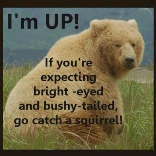 Early Morning Quotes: Top 28 #Interesting #Funny #Monday #Quotes