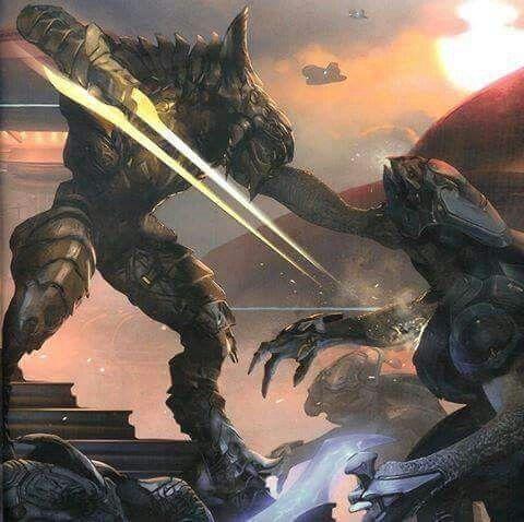 The arbiter kills an enemy sangheili