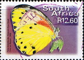 South Africa Butterflies SG 1230 False-dotted border Fine Used SG 1230 Scott 1198 Other African Stamps HERE