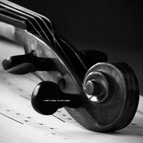 Violin - Ignazio Marassi / 500px