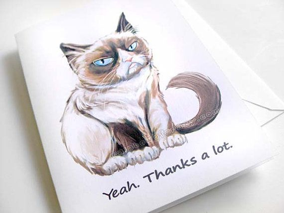 Funny Thank You Cat Memes : Grumpy cat card thank you funny greeting