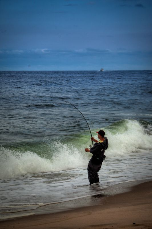 1000 images about fishing on pinterest deep sea for Ocean city deep sea fishing