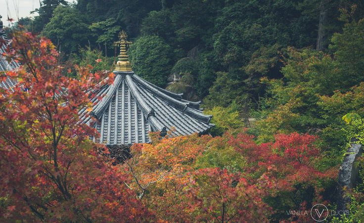 Lors de notre randonnée au sommet du Mont Misen, un temple nous accueille alors que la pluie se fait plus dense. C'est le Pavillon Reikado,…