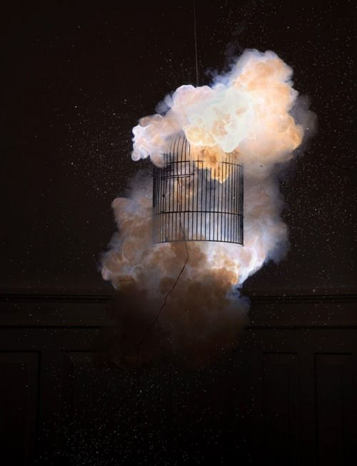 Photographs by Joschi Herczeg and Daniele Kaehr.: Photographers, Lights, Artists, Daniel Kaehr, Magic, Explosions, Joschi Herczeg, Birdcages, Photography Inspiration
