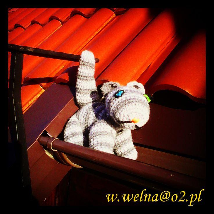 Litle cat ? :) ... Tiger is hier :)  #cat #tiger #kotek #kot #tygrys #włóczka #wełna #szydełko #druty #robótki #rękodzięło #rekodzielo #handmade #dachowiec #zabawki #toy #toys