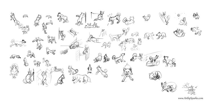 """Lesson 6 """"extrapolation"""" doing 2 hours worth of animals mimicking human emotions/poses   each one 4 minutes each."""
