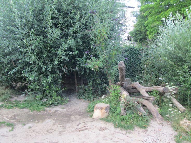 De vooringang van de wilgenhut,. met ernaast een liggende boom. Nutsschool Maastricht
