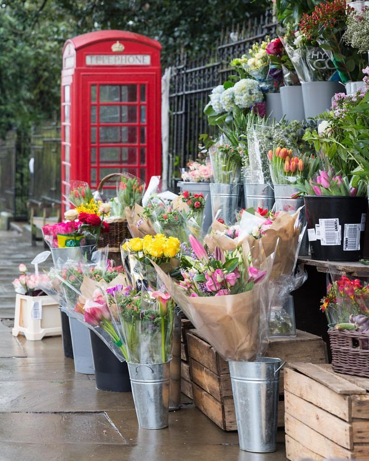 Flowers and a red phone box in London's Highgate
