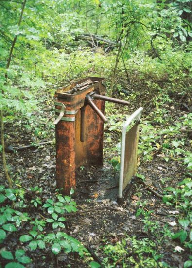 Abandoned amusement park in Ohio....the turnstile - weird to think that at one time it was a whole different place.  I would love to find one of these and go through it