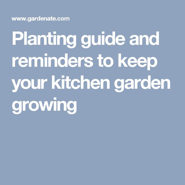 Planting guide and reminders to keep your kitchen garden growing