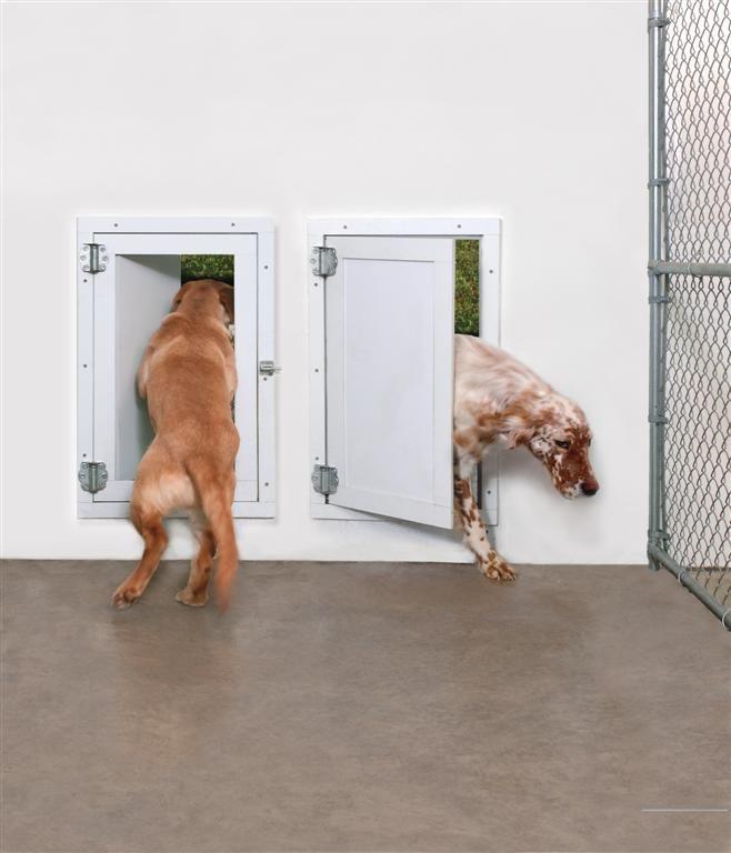 Best Electronic Dog Door Reviews Dog Door Pet Door Large Dog Door