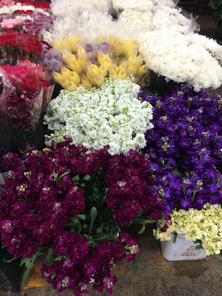 1000 Images About Bi Level Homes On Pinterest: 1000+ Images About Mixed Bouquets & Flower Bunches On