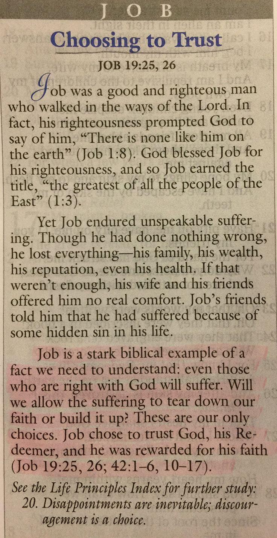 Charles Stanley Life Principles on Job.