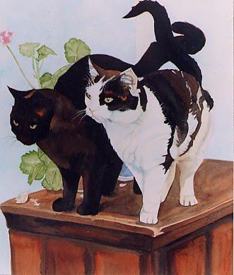Keli Clark   WATERCOLOR   Black & White Cats