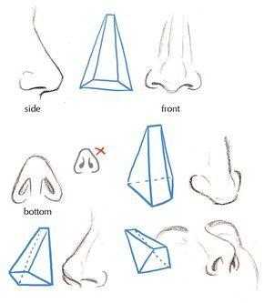 Fundamentos del Rostro Humano | 3D CHANNEL