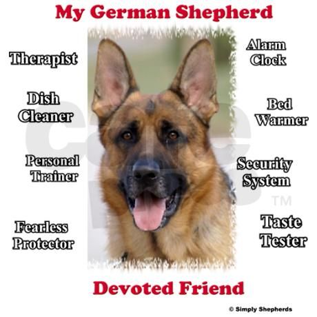 Best Dog Food For Itchy German Shepherd