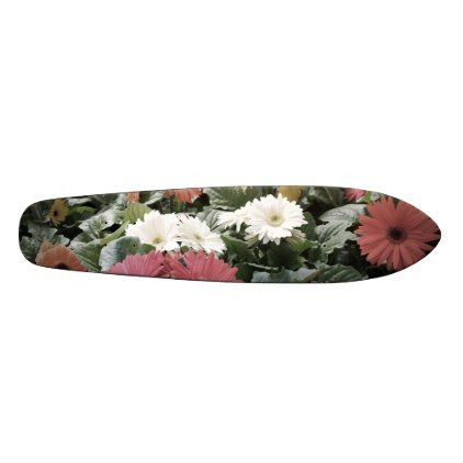 Colorful Asters Flowers Photo with Muted Colors Skateboard - flowers floral flower design unique style