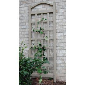 Dura-Trel 28-in W x 76-in H Mocha Transitional Garden Trellis | This best selling trellis can be used against a wall or set freestanding using the 2 included 16 inch steel ground anchors. Maintenance free. Easy cleaning with garden hose. PVC vinyl is UV protected. Strong enough for any vine or climbing plant. $53.