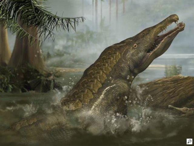 giant crocodile dinosaur wwwimgkidcom the image kid