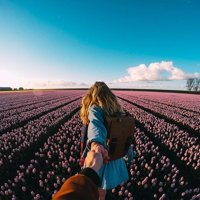 """""""The begin of the tulip season is finally here again - Holland is at it's best!"""" : @saltinourhair •"""