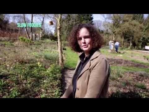 Hovenier Anthonetta van Bergenhenegouwen geeft tips voor wildplukken in mei. Wat staat er in de eetbare tuin?