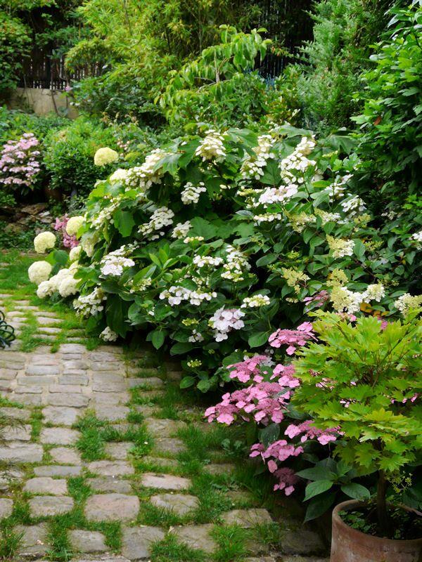 Visite d'un foisonnant jardin anglais