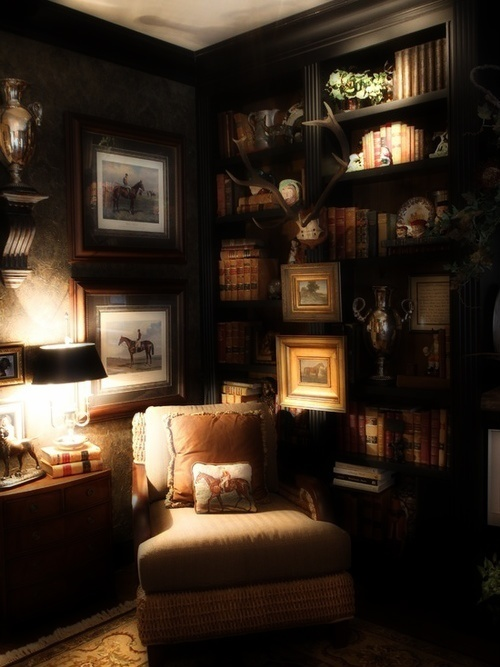 Relaxing Library Corner . . . .