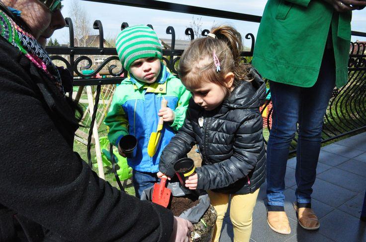 Zielone warsztaty ogrodnicze dla przedszkolaków zrealizowane przez http://ZielonaTerapia.pl Nauka przez zabawę :)
