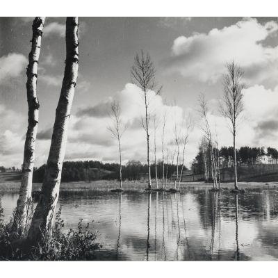 Przedwojenna fotografia:   Spring Clouds Kazys Daugėla, Iki 1944/ Apie 1980  glossy photographic paper, silver bromide photography, 27.00 x 30.90 cm