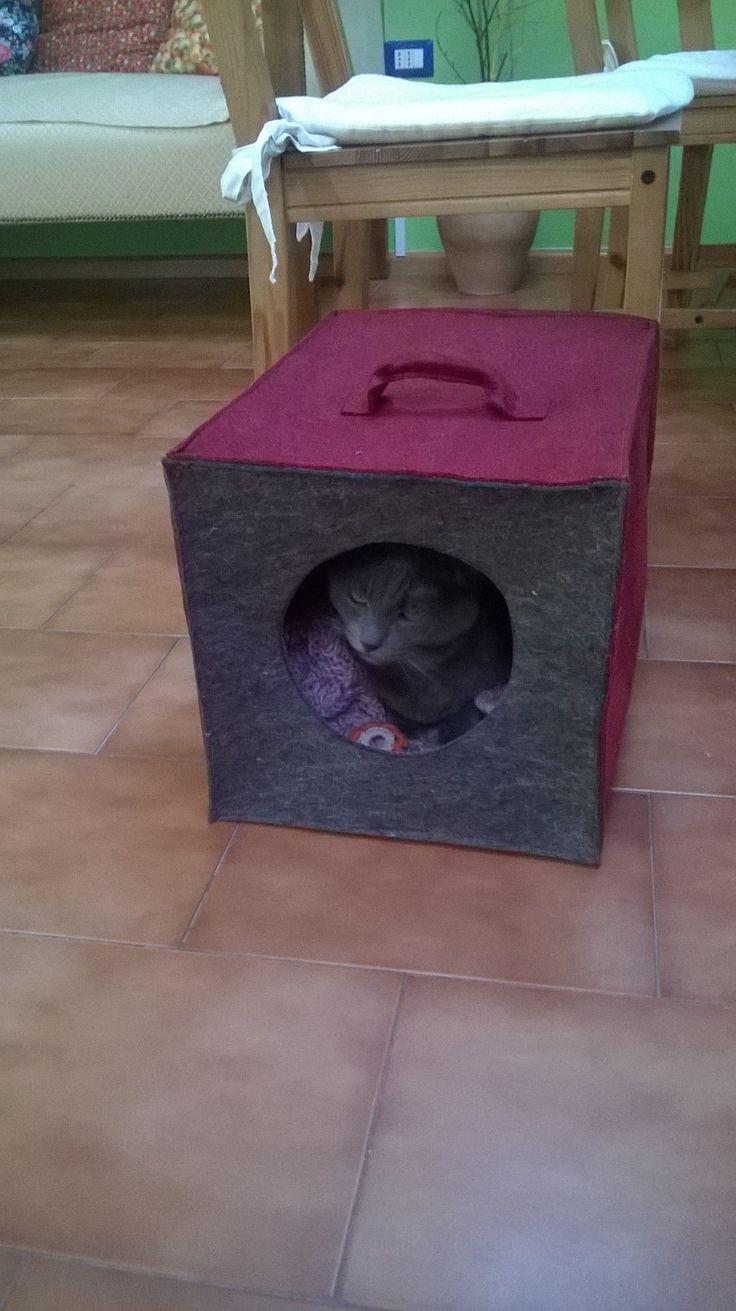 casetta per gatto in feltro