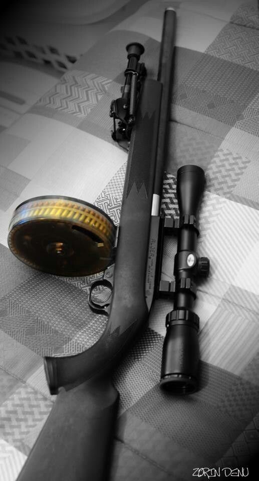 Ruger 10/22 rifle with a drum....This has fun written all over it!