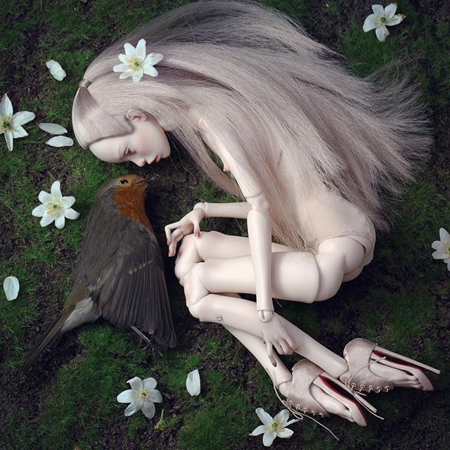 RIP little bird Прощай маленькая птичка.  #popovysisters #popovydolls #deadbird #bjd #art #artdoll #artwork