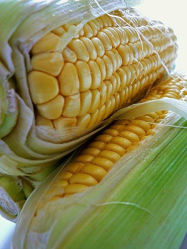 Time saving tip microwave your corn on the cob tiny tips from