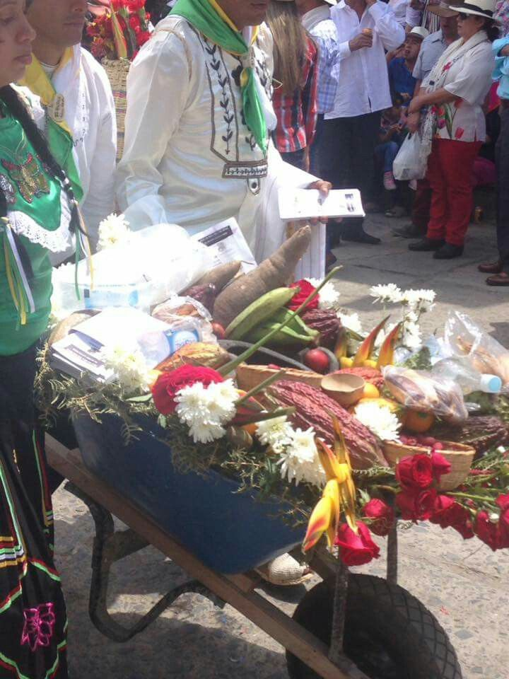 Desfile de las flores Vélez Santander