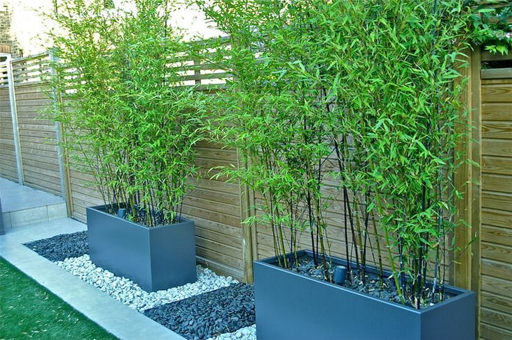 DIY Outdoor Screens and Backyard Privacy Ideas • The