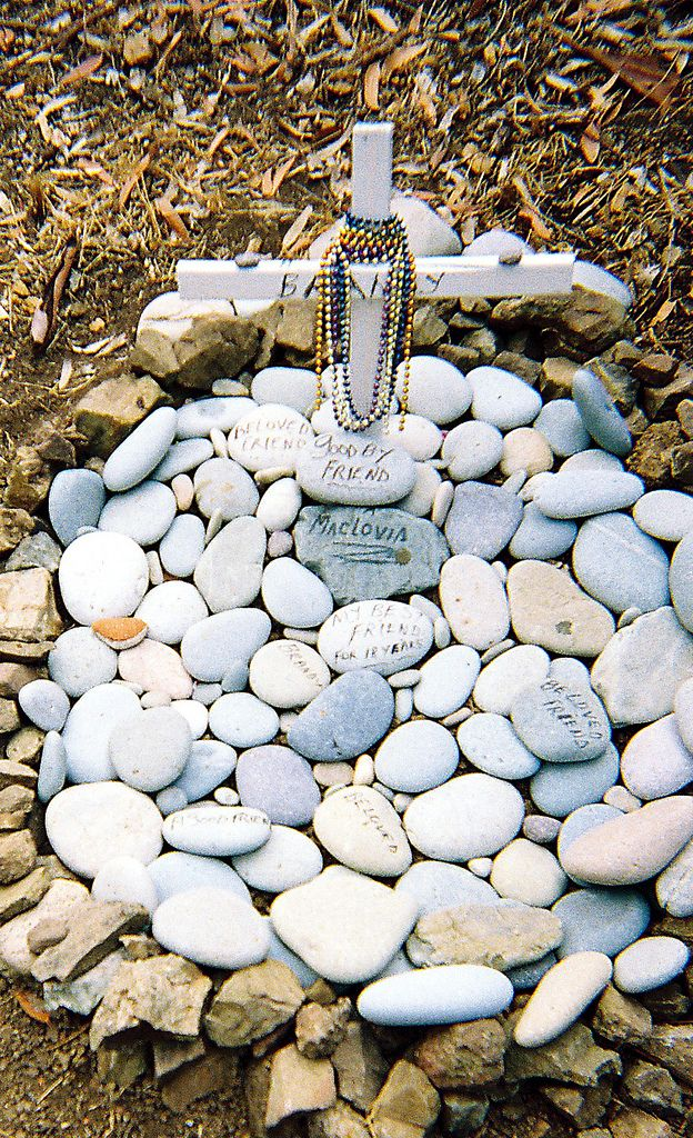 Pet cemetery Catalina Island. A simple idea for burying a beloved pet without spending money on a granite memorial headstone. Still, using a PawPod casket will be beneficial for the earth.  See more at http://pawpods.com .  #petmemorial #pawpods #petgrave