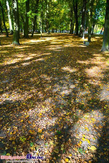 Jesień w Białymstoku