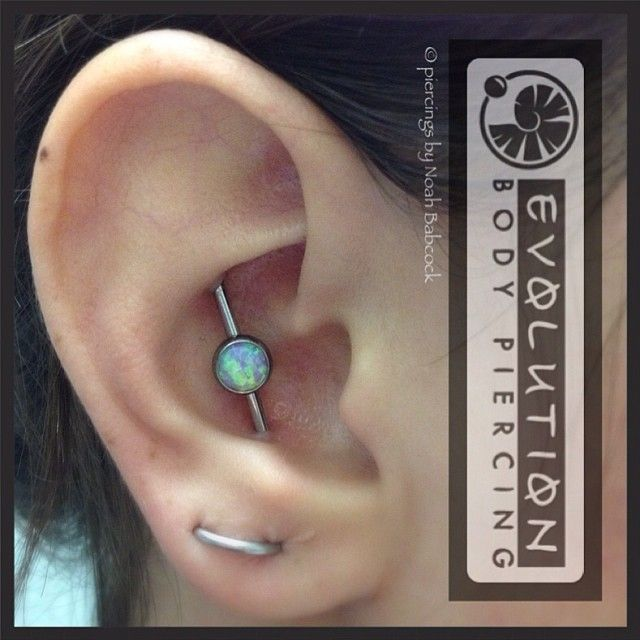 Conch to conch industrial piercing with opal set in titanium jewelry by Anatometal (at Evolution Piercing)