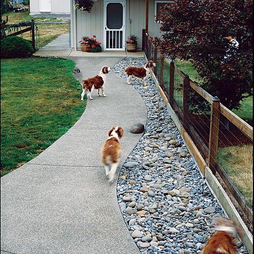 83 Best Wire Fences Images On Pinterest Gardening Gates