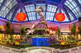Bellagio Conservatory & Botanical Gardens Open 24/7 at no cost!
