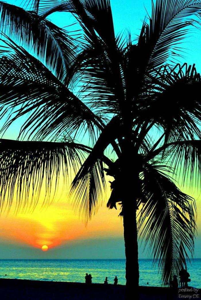 Sunsets are proof that endings can often be beautiful too♡ Los atardeceres son prueba de que los finales suelen ser hermosos también..♡ @gricelgamarragi